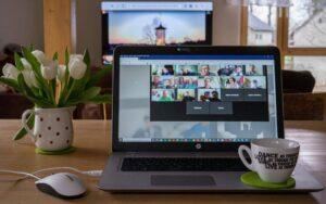 Virtuelle-Teams-Führen-auf-Distanz-Webinar-Emotionale-Intelligen-Gabriela-Wischeropp