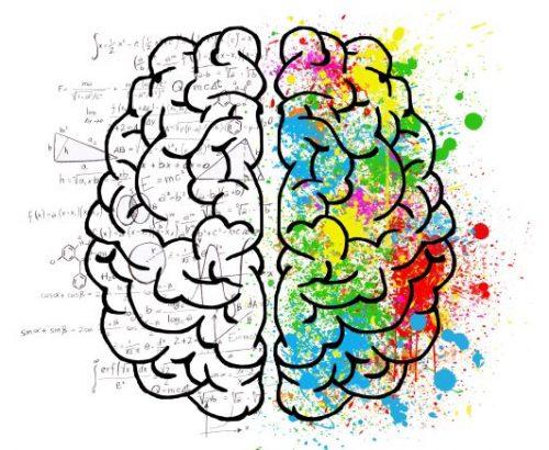 Gehirn-Emotionale-Intelligenz-Wischeropp